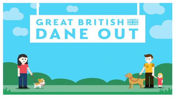 dane out poster