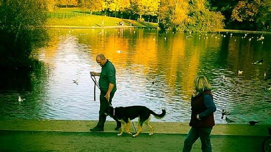 Paul daly in Abington park