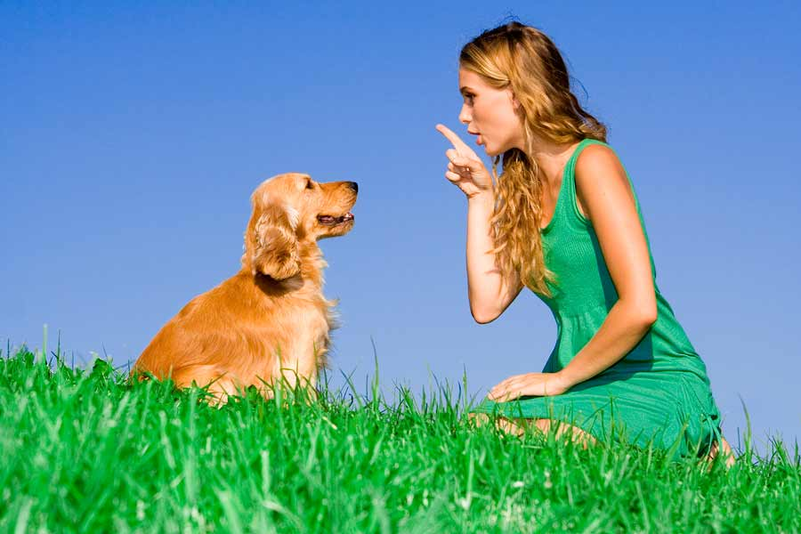 woman sat with dog