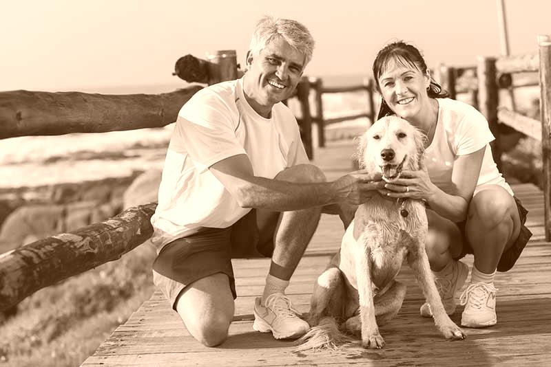 Couple with Labrador dog